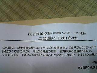 20101122.JPG